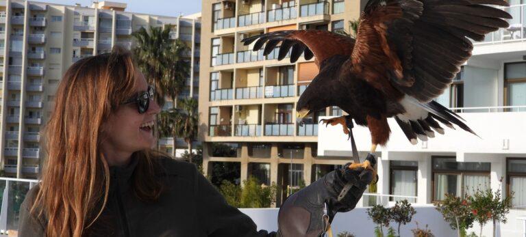 Ett liv tillägnat rovfåglar: En Sueco möter Beatriz E. Artero
