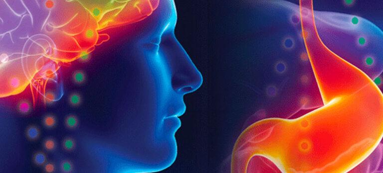 BodyTalk – om hjärna-mage förbindelsen
