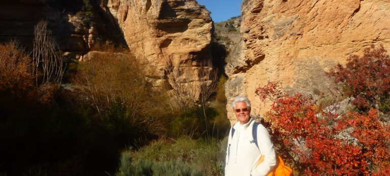 Gran Canyon gå och lägg dig