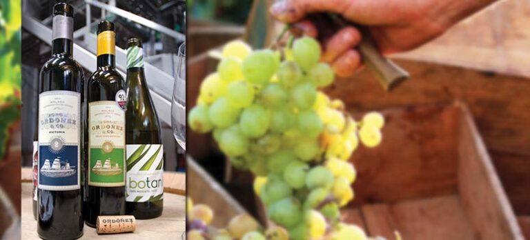 Nobelvin satte Málaga på vinkartan
