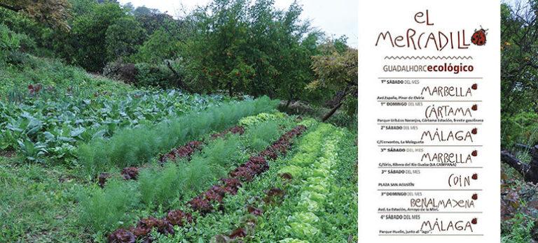 Ekologisk odling mer än bara en trend