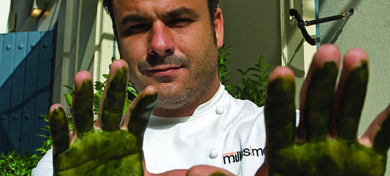 Ángels green fingers