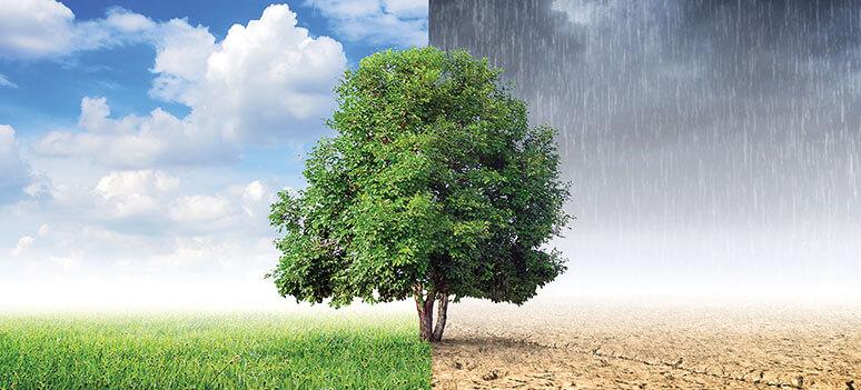 KN klimaforandringer