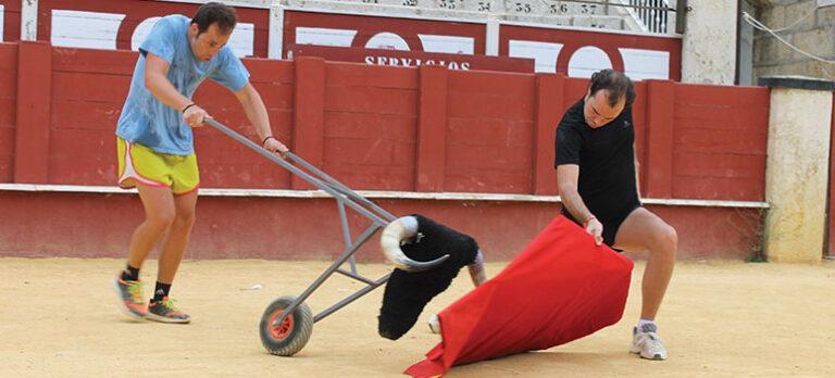 EU-lag legitimerar spansk tjurfäktning