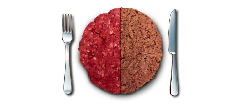 Växtfärs och vegobullar – köttalternativ