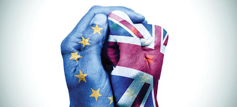 kn brexit