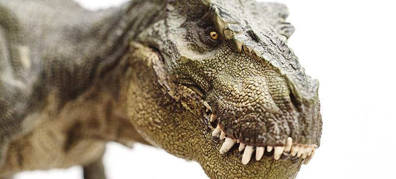kn-dinosaur
