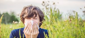Säsongsbunden allergi