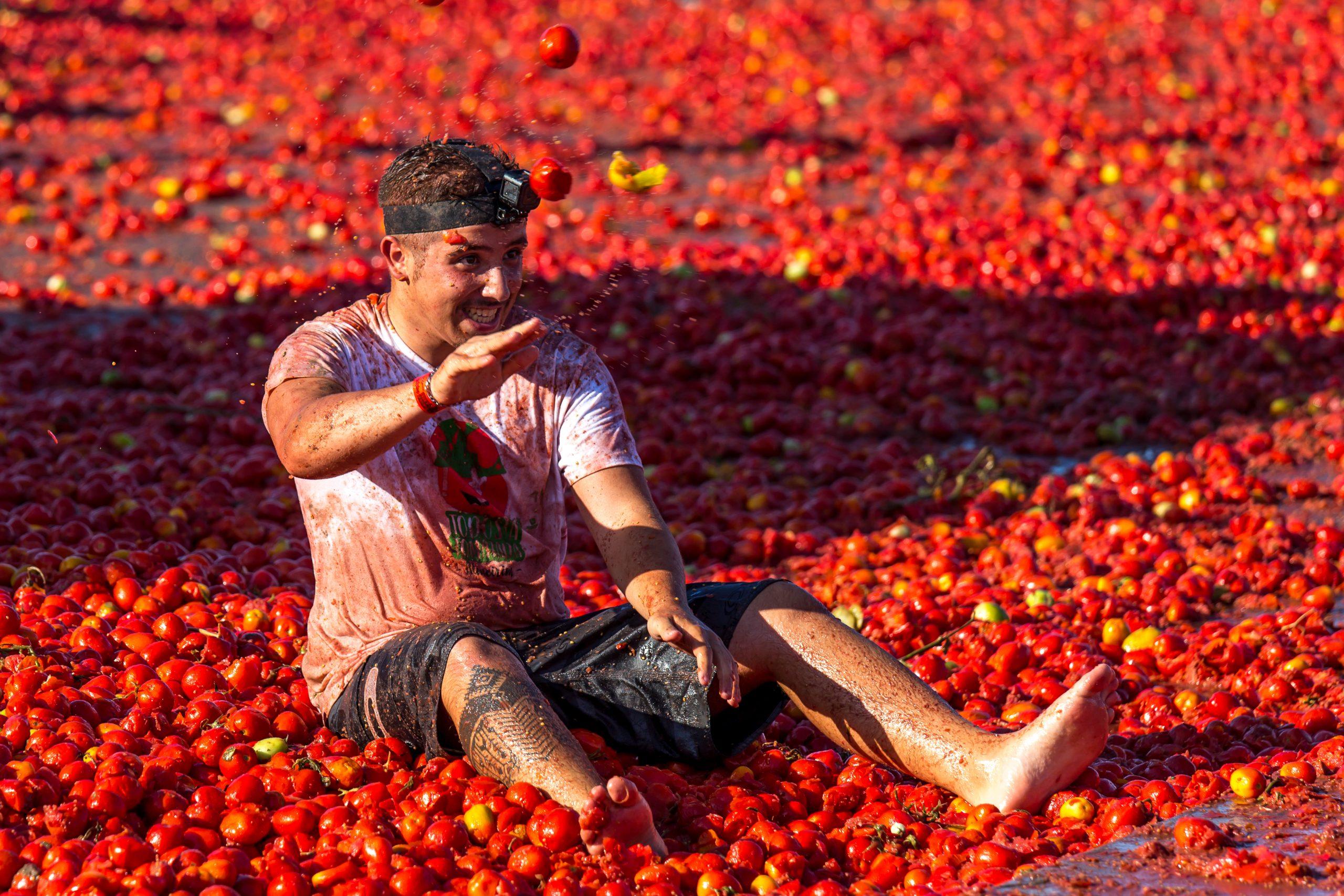 Det röda tomatkriget
