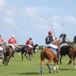 Sotograndes 50:e internationella polomästerskap
