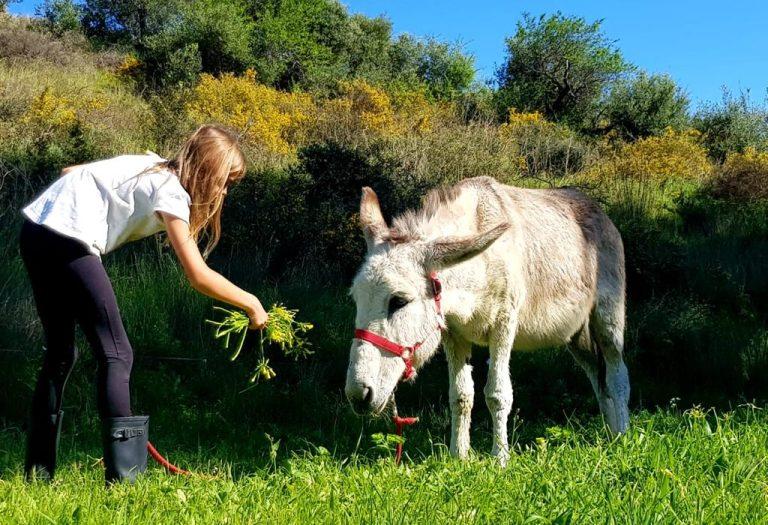 Familjedag på den andalusiska landsbygden – bara 5 minuter från kusten