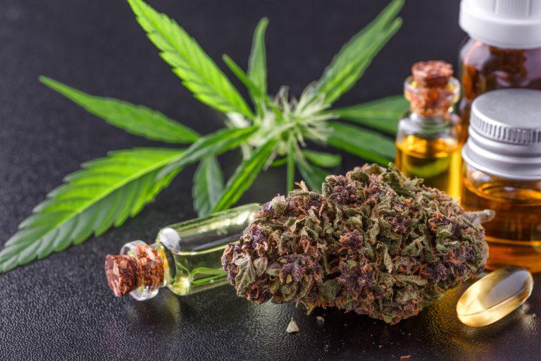 Spanskt nej till cannabis